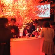 川崎クラブチッタ、ボージョレ・ヌーヴォー解禁の11月20日にフランス・イタリア・日本の3種ヌーヴォーが飲み比べできるパーティーを開催。