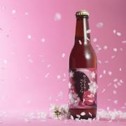 限定チョコビール、約1か月で9万本が完売。2月24日より桜の花と葉を使った桜餅風味ビールの限定販売が決定。