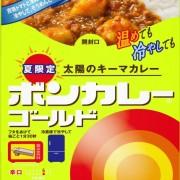 ボンカレー初、冷やして食べる「太陽のキーマカレー」が登場。冷やしカレーそうめんを提案。