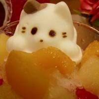 栃木県小山市の猫カフェ「Cats cafe 22番地」、夏限定「にゃんこのかき氷」の販売を開始。