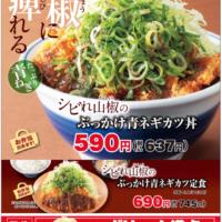 """カツ丼に""""シビレ""""と""""ぶっかけ""""の新提案、「かつや」に「シビれ山椒のぶっかけ青ネギカツ」が新登場。"""