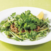デニーズ、〝ビギナーパクチスト〟の方にもおすすめ「パクチーと緑野菜のアジアンハンバーグ」発売。