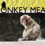肉バル「パンとサーカス」、美食家の魯山人も食べた究極のジビエ「サル肉」料理を完全予約制にて提供。