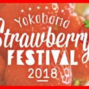 横浜赤レンガ倉庫、過去最多数の店舗が参加するストロベリーフェスを開催。特別メニューを期間限定で提供。