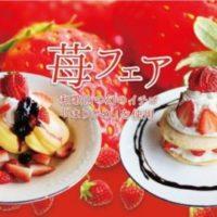 """幻の高級苺""""まりひめ""""のふわふわパンケーキが新登場。大粒でしっかり果肉のブランド苺。"""