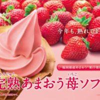 ミニストップ、あまおうを増量した人気「完熟あまおう苺ソフト」を発売。