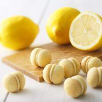 キリンレモンをクッキー化 東京土産の人気ブランドからサクホロ甘酸っぱい新商品が登場