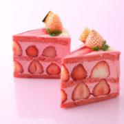 パティスリー洛甘舎、「プレミアム白苺」ショートケーキが新発売。